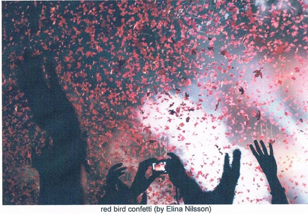 SEPARATED BEYOND EQUALS (RED BIRD CONFETTI)