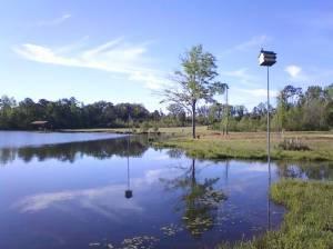 Troy Alabama, Home of Pastor Ellis Bush