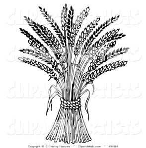Wheat: clip art by Charley Franz